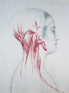 Omar Galliani, Nuove anatomie, 2001, matita su tavola, pastello 251 x 185 cm