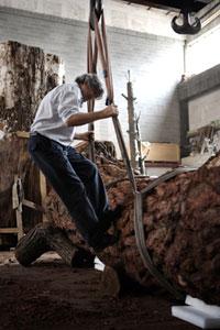 Giuseppe Penone realizza Albero di cuoio 1, 2007 - Foto Luca Stoppini - courtesy Uomo Vogue