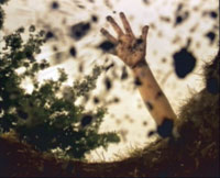ANNA GASKELL - Future's Eve, 2000  (still da video)