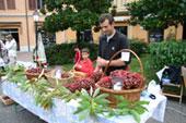Casola Valsenio, Festa dei Frutti Dimenticati