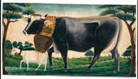 Opera di Johannes Muller