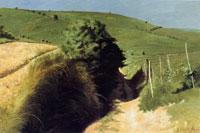 Gregorio Calvi di Bergolo, San Carlo, stradina di campagna, 1974