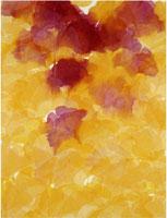 DAVIDE BENATI, Zafferano, acquarello su carta intelata, cm 195x147,5, 2006