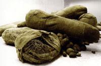 Magdalena Abakanowicz, Embriology, 1978-81, tela, garza di cotone, corda di canapa, nylon, sisal, 680 pezzi ca, dimensioni variabili da 4 cm a 4 m, courtesy Marlborough gallery New York