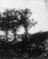 Rembrandt, I tre alberi, 1643