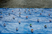 Nuotatori, installazione di Federico Paris