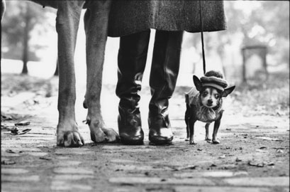 Elliott Erwitt, Usa. New York. 1974. Felix Gladys and Rover © Elliott Erwitt