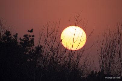 AHAE-Sunset