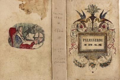 Palmaverde