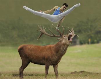 ROBERT GLIGOROV, Gymnast with Deer 2010, Stampa Lambda su dibond e plexiglass, Edizione di 5 esemplari + 2 A.P.cm 80 x 80, Courtesy Galleria Pack, Milano