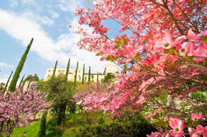 Giardini di Sissi, Merano