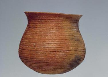 Santa Cristina di Fiesse (Brescia), vaso campaniforme età del Rame 3, 2500-2200 a.C.