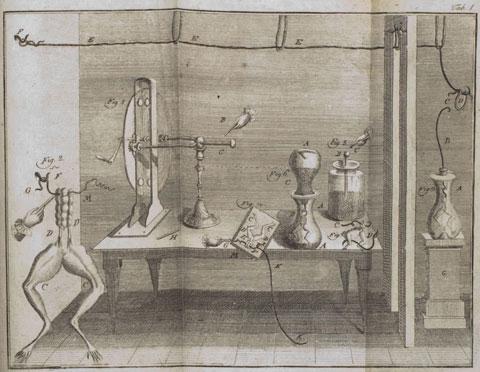 Esperimenti di Galvani sull'elettricità animale