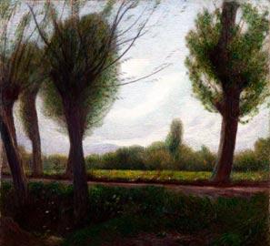 Pellizza da Volpedo, Paesaggio (presso il prato Pissone) 1904, Olio su tela, 63,5 x 63,5 cm
