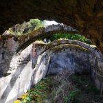 Isola di Vivara, Armeria francese, foto di Giusy Vitale