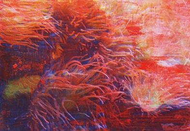 Giovanni Frangi: Samoa, 2007 tecnica mista su tela 200 x 260