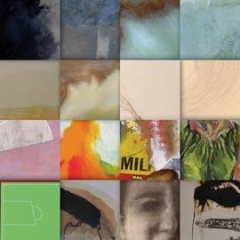 La Collezione dei dipinti, dei disegni e delle stampe