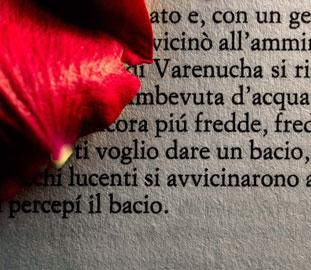 Words #28, Romanzo d'amore, 2012 - credits Luisa Menazzi Moretti
