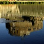 Antonio Gregori - Riflessi urbani passeggiata sul fiume