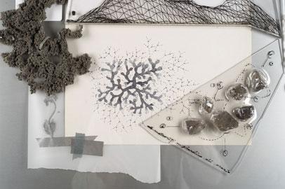 Loris Cecchini Fossil cast doubts on molecular clock, 2013 (dettaglio) tecnica mista, 60x60x8cm © Carole Parodi