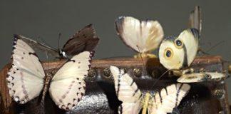 Bertozzi e Casoni, Sedia Elettrica con farfalle, particolare, 2010, ceramica policroma, cm 165x118x95