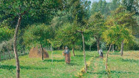 Camille Pissarro La Verger à Eragny, 1896 olio su tela 54,6 x 65,4 cm Carmen Thyssen-Bornemisza Collection, on loan at the Thyssen-Bornemisza Museum, Madrid