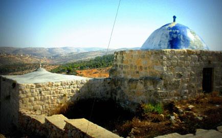 Palestina Raccontata. Viaggi dall'Occidente, Viaggi dell'Interno