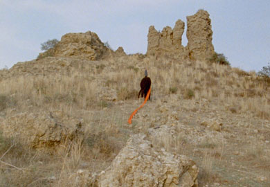 """Chapters"" di Haris Epaminonda, film su pellicola 16 mm. Durata: 4 ore circa Sonoro di 'Part Wild Horses Mane On Both Sides', 2013"