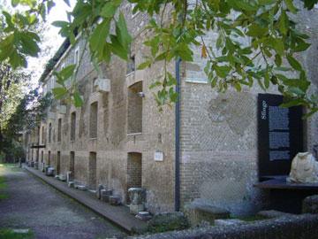 foto Antiquarium del Canopo