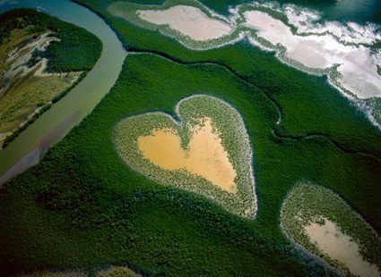 Cuore di Voh nel 1990 , Nuova Caledonia, Francia 20° 56's - 164° 39' e © YAnn Arthus-Bertrand