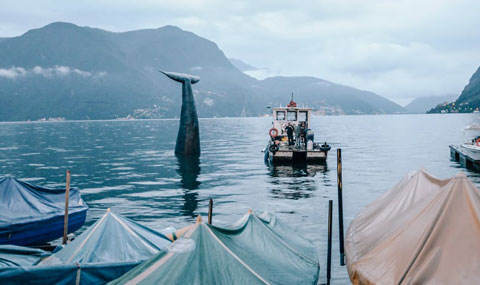 Save the Whale @Area Turismo ed Eventi