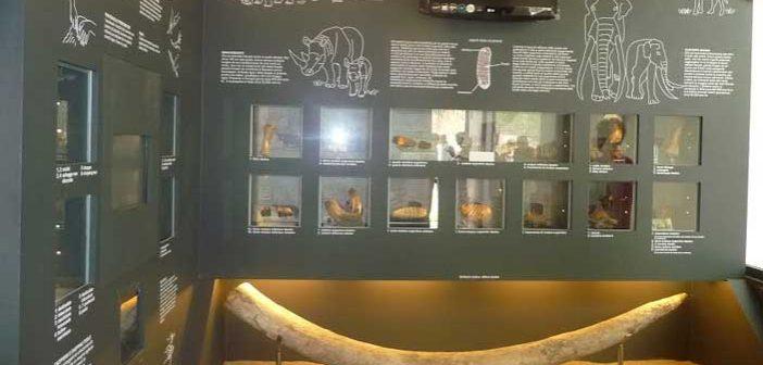 Roma | Apre il Museo di Casal de' Pazzi