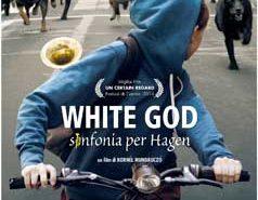Locandina White God