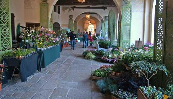 Giardinity a Villa Pisani ora Bolognesi Scalabrin, Vescovana (Padova)