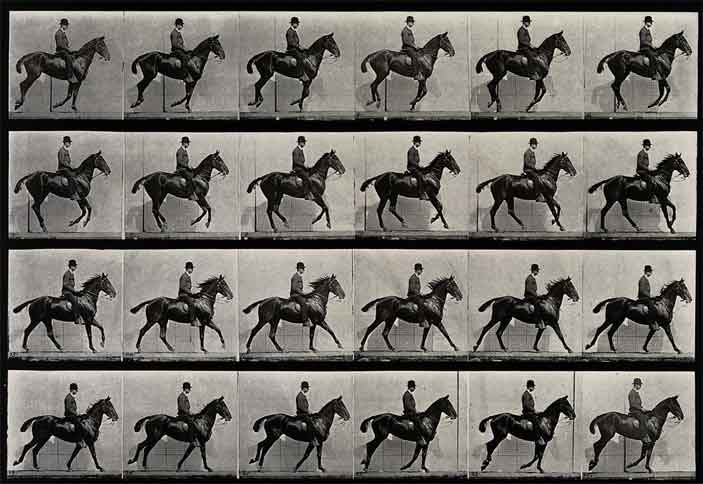 Eadweard Muybridge, A cantering horse and rider, 1887, Wellcome Library, educational project
