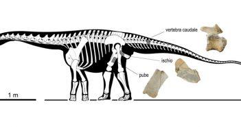 Dinosauro Tito