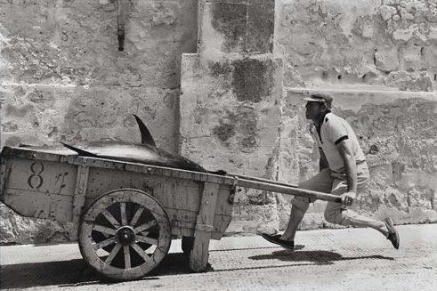 Leonard Freed, Sicilia, 1975