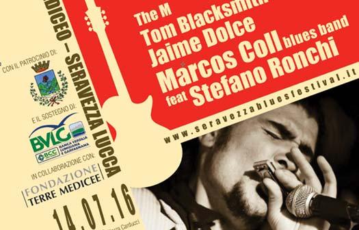 Seravezza Blues Festival, Locandina