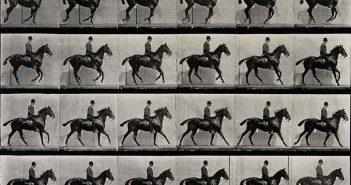 A cantering horse and rider, Eadweard Muybridge, 1887
