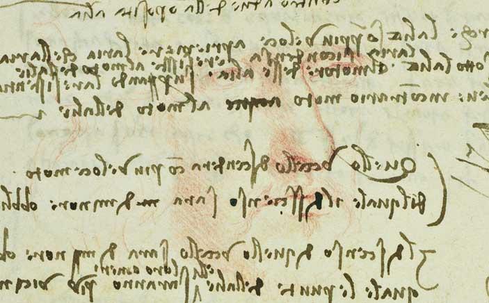 Leonardo, Codice del Volo degli uccelli, particolare