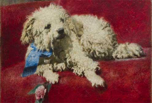Daniele Ranzoni, Barboncino bianco, 1878-79, olio su tela 37 x 44 cm  Daniele Ranzoni, Barboncino bianco, 1878-79, olio su tela 37 x 44 cm