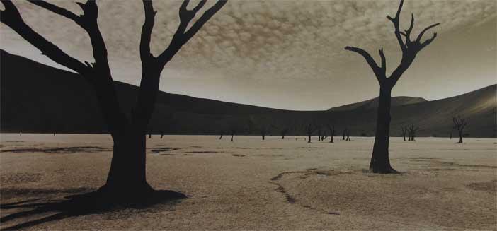 Paolo Solari Bozzi, Deadvlei, Sossusvlei #1, Namibia, 2014 -  #WithRefugees. Fotografi per i rifugiati