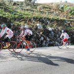 Alfonso Cesare, Biciclette