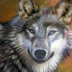 Giovanna Angela Carru, Il lupo