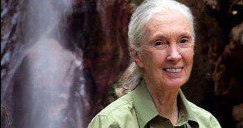 Jane Goodall al National Geographic Festival delle Scienze