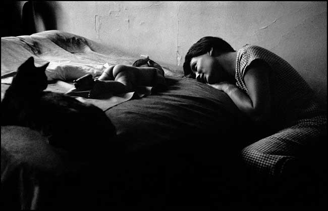 Elliott Erwitt: New York, 1953 © Elliott Erwitt / Magnum Photos / Contrasto