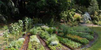 Monte Verità, Giardino spezie - Giardini in arte