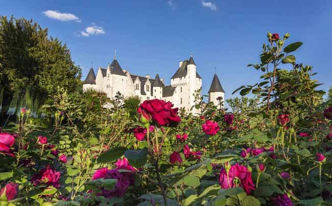 Castello di Rivau - Festa delle Rose