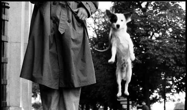 Paris, France, 1989 © Elliot Erwitt / Magnum Photos. Attenzione per l'utilizzo delle immagini leggere il file allegato