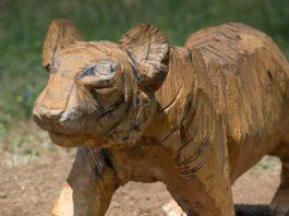 Sculture in campo, Tigre di Luigi Puxeddu